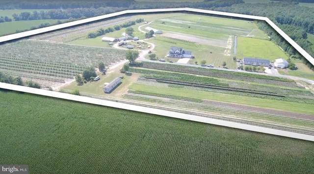 4643 Hong Farm Road, SEAFORD, DE 19973 (#DESU166288) :: BayShore Group of Northrop Realty