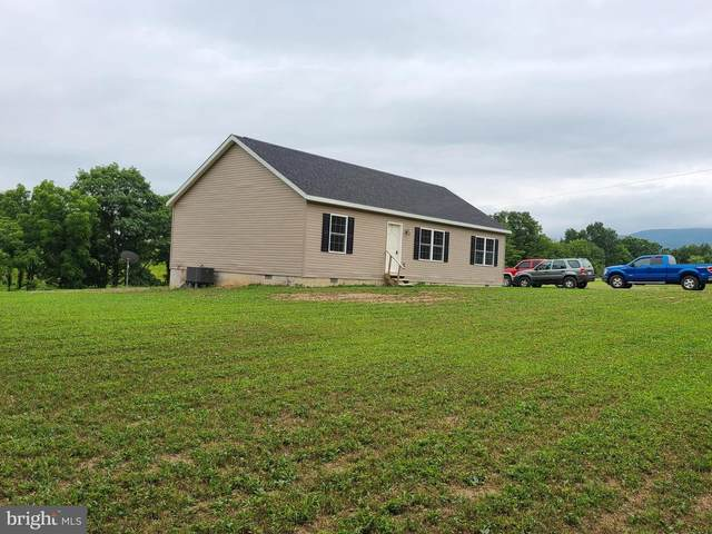 100 Chestnut Way, PURGITSVILLE, WV 26845 (#WVHD106224) :: The Dailey Group