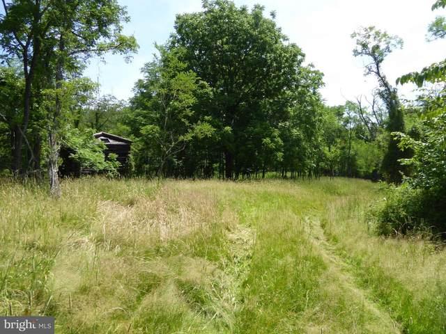 Little Capon Road, SLANESVILLE, WV 25444 (#WVHS114484) :: LoCoMusings