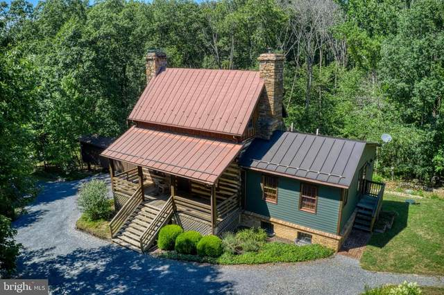 587 Brush Leaf Lane, MOUNT JACKSON, VA 22842 (#VASH119936) :: Colgan Real Estate