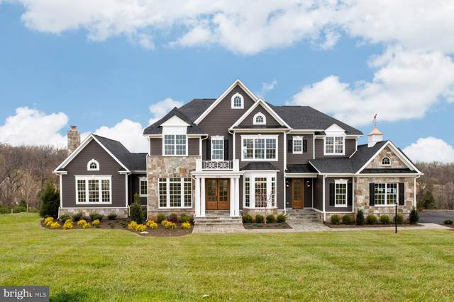 16102 Waterford Crest Place, PAEONIAN SPRINGS, VA 20129 (#VALO418386) :: RE/MAX 1st Realty
