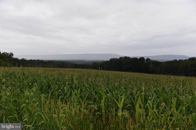 Lot 1A Yankee Way, MC CONNELLSBURG, PA 17233 (#PAFU104612) :: ExecuHome Realty