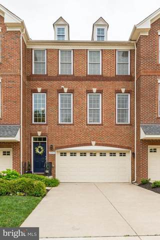 25572 Creekmore Terrace, CHANTILLY, VA 20152 (#VALO418414) :: Pearson Smith Realty