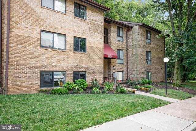 6075 Majors Lane 1I13, COLUMBIA, MD 21045 (#MDHW283568) :: ExecuHome Realty