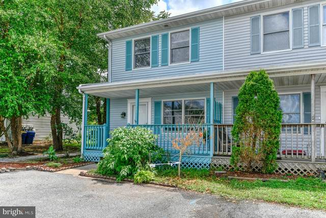 445 S Spinnaker Lane, MILTON, DE 19968 (#DESU166434) :: Pearson Smith Realty