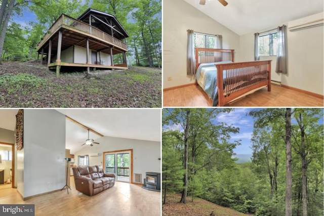 938 Possum Hollow Trail, GERRARDSTOWN, WV 25420 (#WVBE179404) :: Lucido Agency of Keller Williams