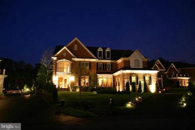11628 Cedar Chase Road, HERNDON, VA 20170 (#VAFX1147528) :: Debbie Dogrul Associates - Long and Foster Real Estate