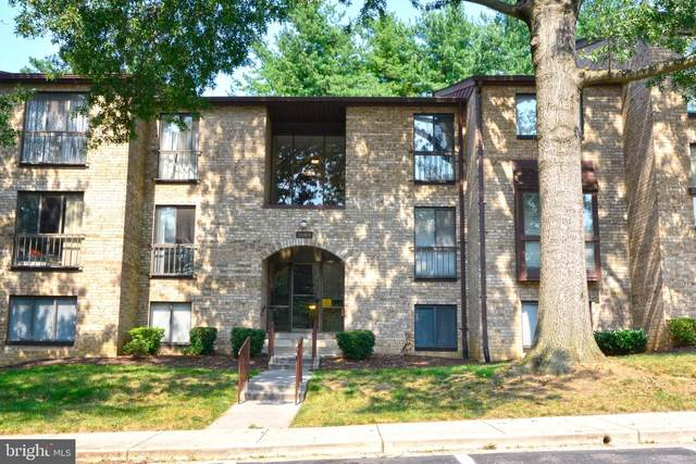 2069 Royal Fern Court 1B, RESTON, VA 20191 (#VAFX1147546) :: Pearson Smith Realty