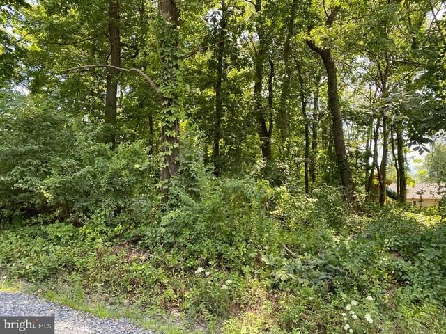Pine Ridge Drive, FRONT ROYAL, VA 22630 (#VAWR141086) :: LoCoMusings