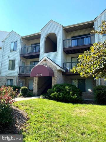 8376 Buttress Lane #203, MANASSAS, VA 20110 (#VAMN140186) :: Colgan Real Estate