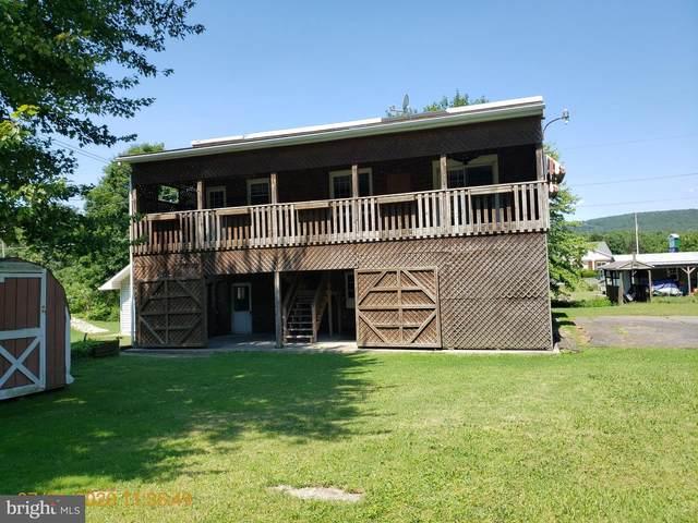 521 Franklin Avenue, TAMAQUA, PA 18252 (#PASK131826) :: Lucido Agency of Keller Williams