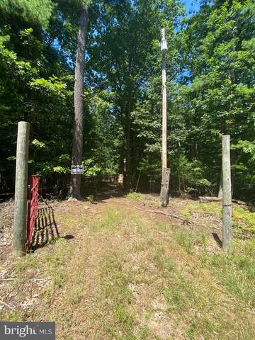 Lots 67 & 68 Tall Tree Dr, LEVELS, WV 25431 (#WVHS114502) :: SURE Sales Group