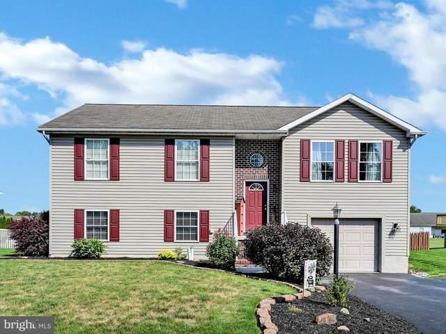 311 Matthew Drive, NEW OXFORD, PA 17350 (#PAAD112710) :: The Joy Daniels Real Estate Group
