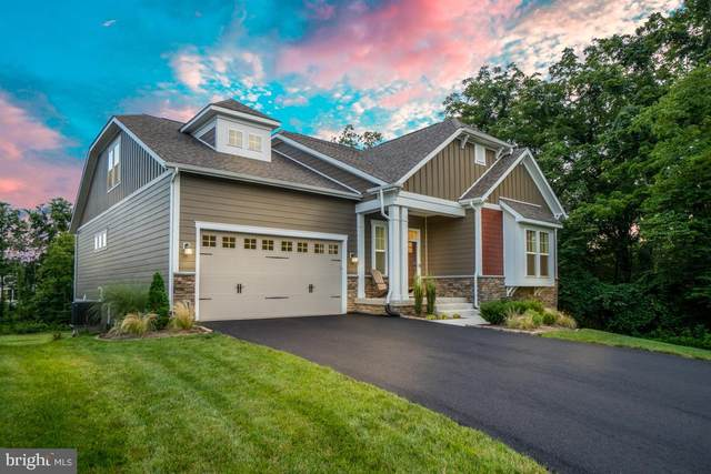 40943 Cutleaf Lane, ALDIE, VA 20105 (#VALO418636) :: The Piano Home Group
