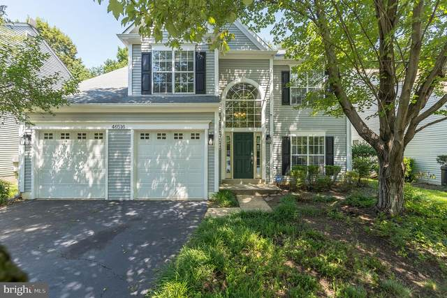 46516 Hollymead Place, STERLING, VA 20165 (#VALO418662) :: Arlington Realty, Inc.