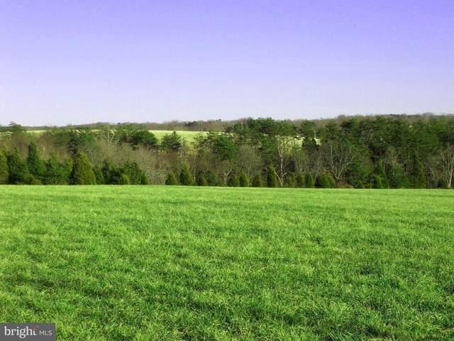 6A Blenheim Road, SCOTTSVILLE, VA 24590 (#VAAB102036) :: Arlington Realty, Inc.