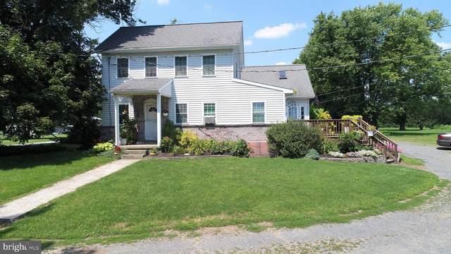 137 Dad Burnhams Road, PINE GROVE, PA 17963 (#PASK131842) :: Lucido Agency of Keller Williams