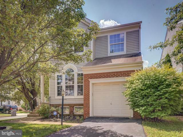 6800 Hollow Glen Court, GAINESVILLE, VA 20155 (#VAPW502052) :: Colgan Real Estate