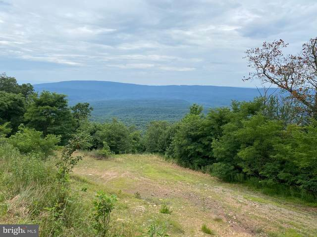 Detour Road, GREAT CACAPON, WV 25422 (#WVMO117244) :: Jennifer Mack Properties