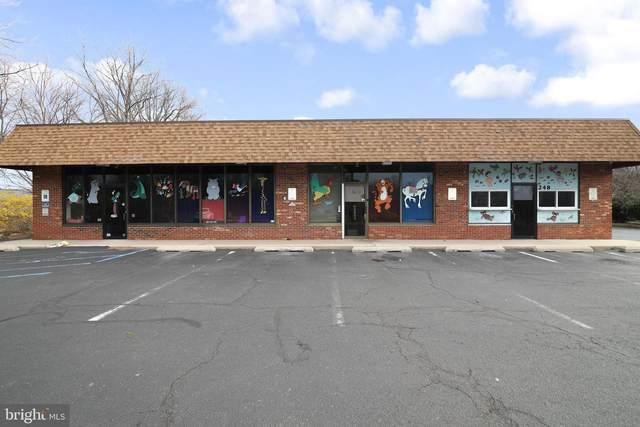 248 Pennypacker Drive, WILLINGBORO, NJ 08046 (#NJBL379172) :: Mortensen Team