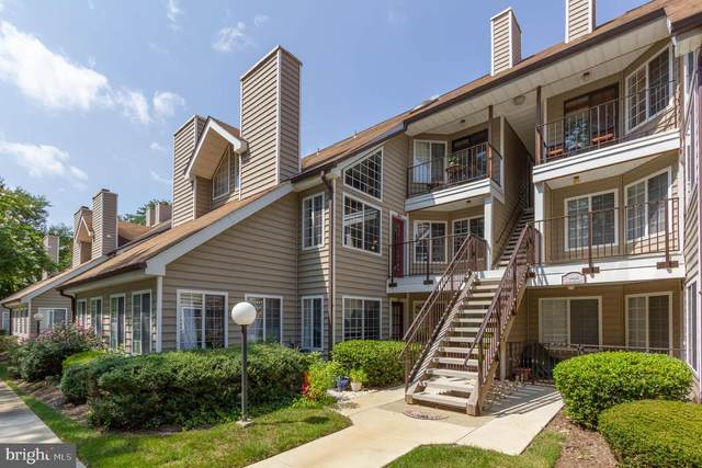 10805 Amherst Avenue B, SILVER SPRING, MD 20902 (#MDMC720902) :: The Putnam Group