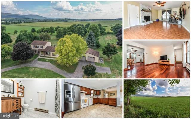21966 Beaverbrook Drive, SMITHSBURG, MD 21783 (#MDWA173996) :: ExecuHome Realty