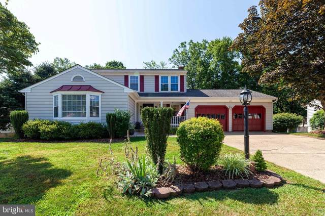 209 Heather Glen Road, STERLING, VA 20165 (#VALO418846) :: The Piano Home Group