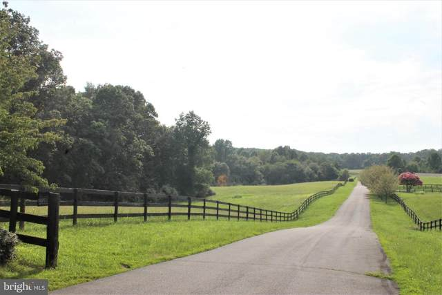 Windemeer Lane, AMISSVILLE, VA 20106 (#VARP107472) :: AJ Team Realty