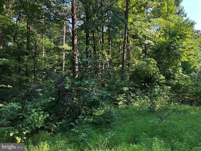 0 Whispering Pine Lane, BENTONVILLE, VA 22610 (#VAWR141114) :: LoCoMusings