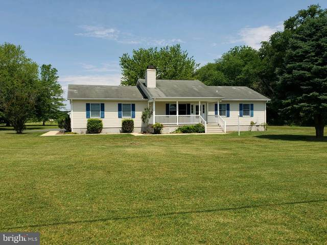 29705 Piney Neck Road, DAGSBORO, DE 19939 (#DESU166680) :: RE/MAX Coast and Country