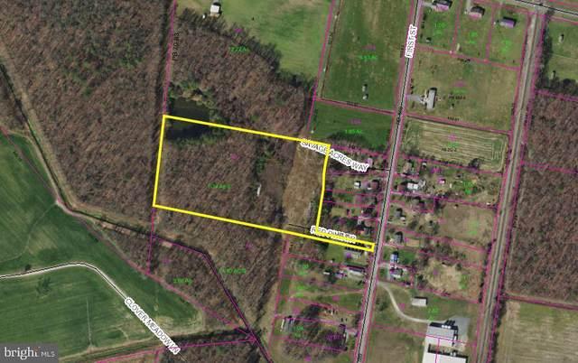 9212 Savage Acres Way, GREENWOOD, DE 19950 (#DESU166726) :: LoCoMusings