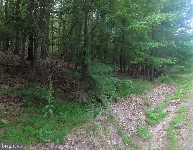 Lot 1 Brumbaugh, HEDGESVILLE, WV 25427 (#WVBE179512) :: Network Realty Group
