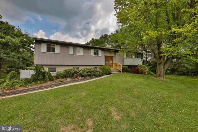 4265 Scheidys Road, WHITEHALL, PA 18052 (#PALH114786) :: Pearson Smith Realty