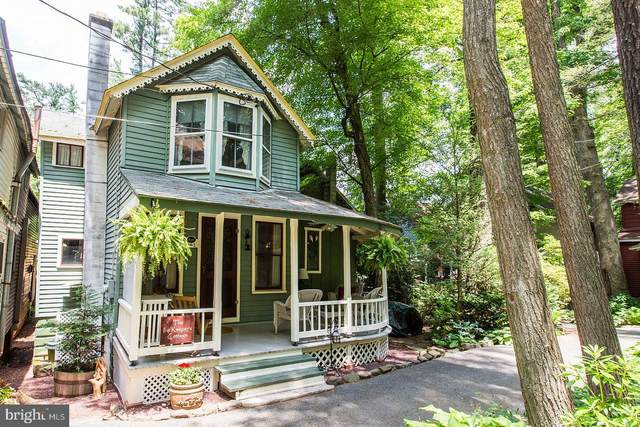 202 Weaver Avenue, MT GRETNA, PA 17064 (#PALN115168) :: TeamPete Realty Services, Inc