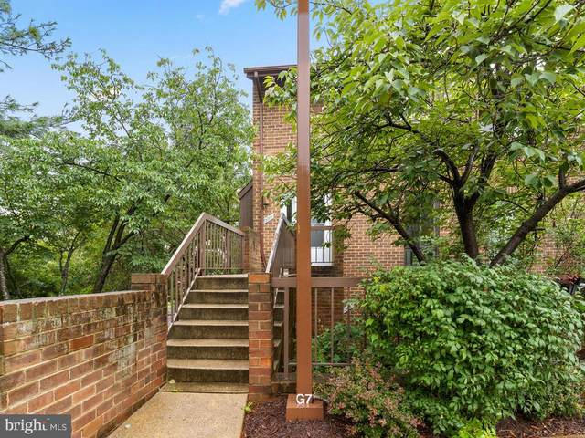 3002 Gentain Court NE #3002, WASHINGTON, DC 20017 (#DCDC482340) :: Eng Garcia Properties, LLC