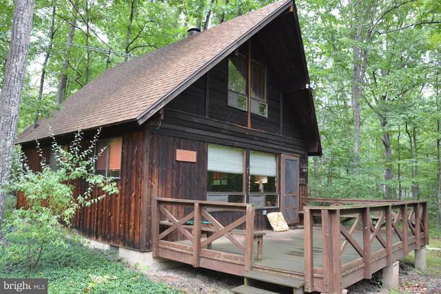 133 Blackfeet Trail, WINCHESTER, VA 22602 (#VAFV159240) :: Advon Group