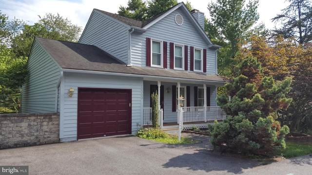 10303 Baykal Trail, NEW MARKET, MD 21774 (#MDFR269276) :: Jim Bass Group of Real Estate Teams, LLC