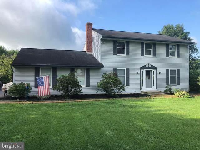 1432 Stonemill Drive, ELIZABETHTOWN, PA 17022 (#PALA168560) :: The Joy Daniels Real Estate Group