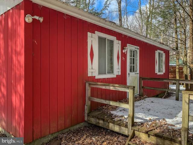 37 Pine Tree Road, ALBRIGHTSVILLE, PA 18210 (#PACC116378) :: Bob Lucido Team of Keller Williams Integrity