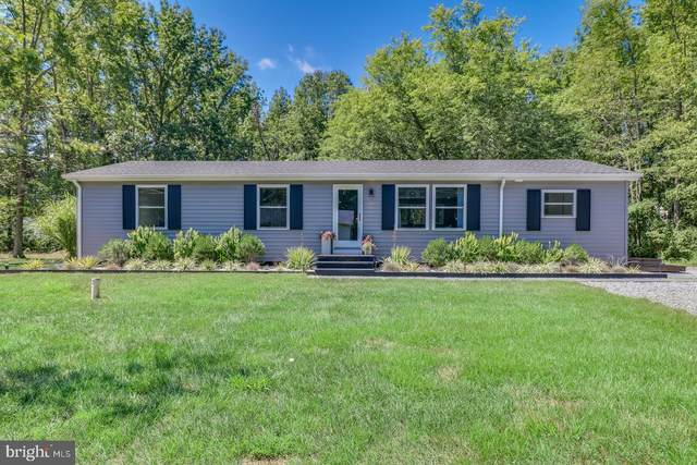 10610 Klamath Road, CHESTERTOWN, MD 21620 (#MDKE116970) :: AJ Team Realty