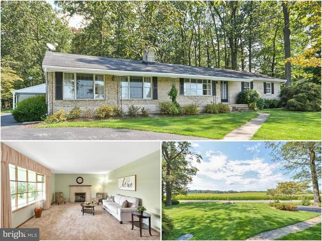 3823 Big Woods Road, IJAMSVILLE, MD 21754 (#MDFR269314) :: The Licata Group/Keller Williams Realty