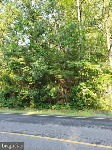 1335 Lakeview Parkway, LOCUST GROVE, VA 22508 (#VAOR137320) :: LoCoMusings