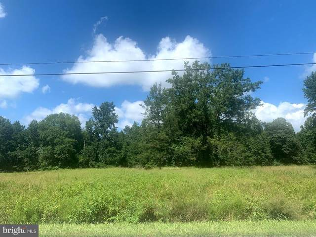 0 Capitola Road, TYASKIN, MD 21865 (#MDWC109398) :: Brandon Brittingham's Team