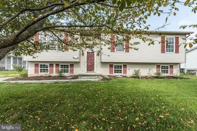 2123 Fifth Street, MIDDLETOWN, VA 22645 (#VAFV159302) :: John Lesniewski | RE/MAX United Real Estate