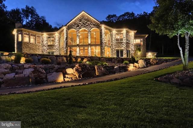 522 Halyard Way, ENOLA, PA 17025 (#PACB127000) :: Better Homes Realty Signature Properties