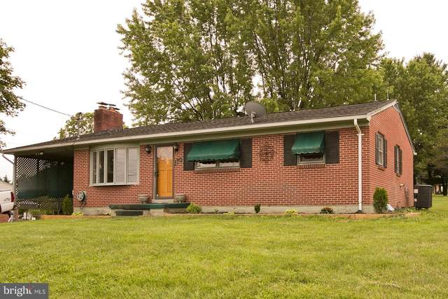179 Locust Avenue, WINCHESTER, VA 22601 (#VAWI114942) :: Debbie Dogrul Associates - Long and Foster Real Estate