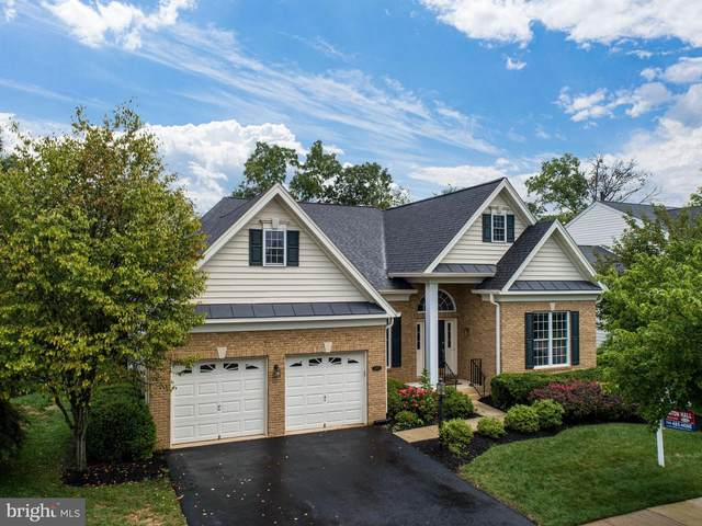 5309 Whitworth Court, HAYMARKET, VA 20169 (#VAPW502762) :: Advon Group