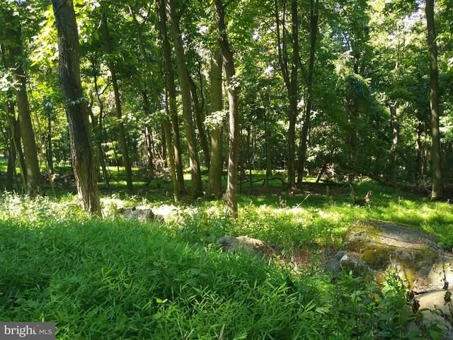 Lot 14Q Deer Trail, FRONT ROYAL, VA 22630 (#VAWR141206) :: Debbie Dogrul Associates - Long and Foster Real Estate
