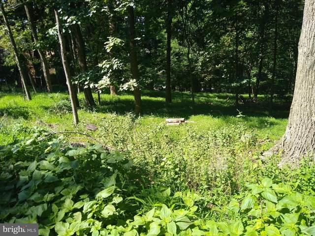 Lot 15Q Deer Trail, FRONT ROYAL, VA 22630 (#VAWR141208) :: Pearson Smith Realty