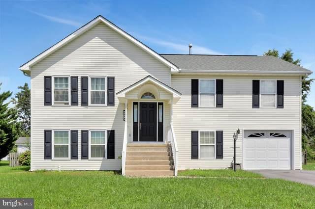 339 Montgomery Circle, STEPHENS CITY, VA 22655 (#VAFV159352) :: Pearson Smith Realty